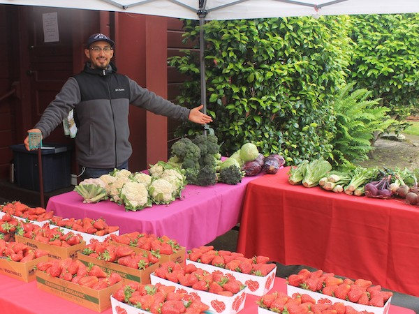 Leo Sanchez manning the ALBA farm stand on a Sunday morning