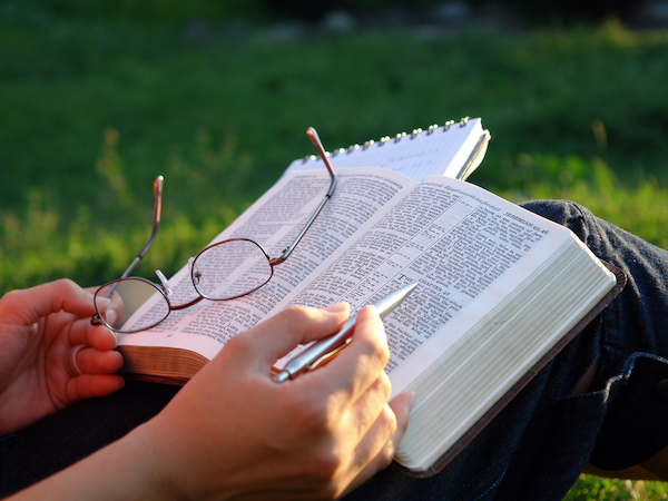 Acts 2:42-47 - reading Bible in a field of grass, studying.