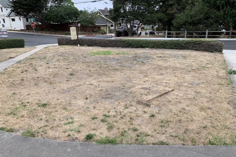 Before: the old lawn where the new labyrinth is